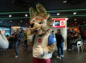 Сочи готов к приезду сборных Бразилии и Польши по футболу