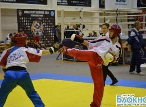 Кубанские кикбоксеры завоевали золото на Кубке России