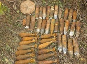 В Краснодарском крае было обнаружено более 80 килограмм тротила