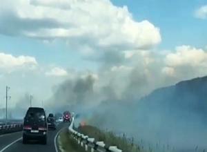 Более тысячи квадратных метров травы сгорело в Анапе