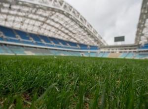 Футбольные сборные России и Бельгии сыграют в Сочи товарищеский матч