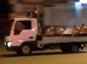 «С ветерком»: мужчины превратили грузовик в бассейн и промчались в нем по Сочи