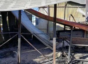 Около 3,5 тысяч птиц сгорело в цеху под Новороссийском