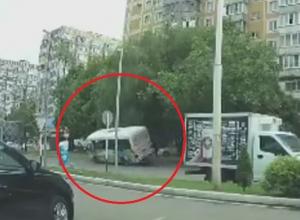В Краснодаре водитель маршрутки отвлекся от дороги и снес дерево