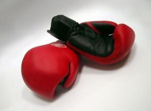 Федерация бокса в Краснодаре может потерять тренировочный зал