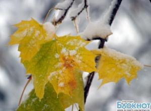 Температура в Краснодаре упадет до минусовой