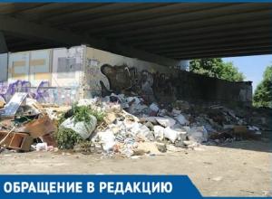 Крысы и вонь появились под Северным мостом Краснодара из-за гор мусора
