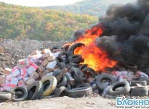 В Новороссийске уничтожили 20 тонн импортного мяса