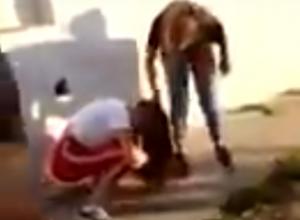 Видео, на котором школьницы избивают сверстницу, заинтересовало полицию Краснодарского края