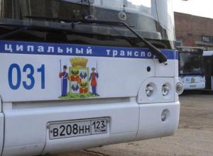 До нового музея Краснодара продлили автобусный маршрут