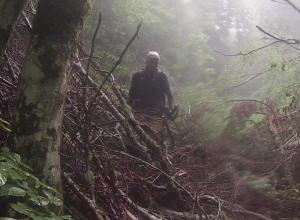 Зону поиска потерявшегося в горах Сочи подростка расширили