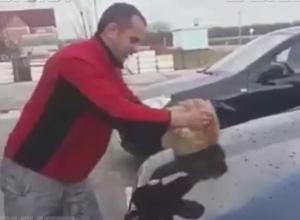 Полиция не стала заводить уголовное дело на жителя Кубани, помывшего котом машину