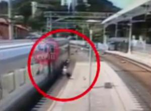 Проводницу, высадившую пассажира из поезда на ходу в Сочи, оштрафовали