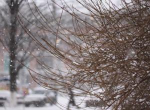 В Краснодарском крае синоптики прогнозируют выпадение мокрого снега