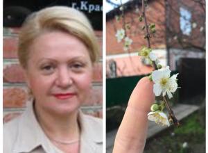 В Якутии минус 40, а в Краснодаре зацвела вишня