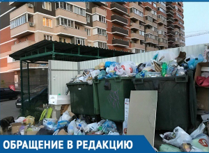 Утонули в мусоре два жилых комплекса Краснодара: «Грязный вопрос» не решается годами