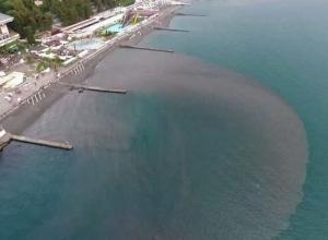 Видео с загрязнением у берегов Сочи всполошило интернет