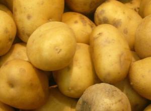 Картофельный кризис наступает в Краснодарском крае