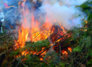 Высокий риск пожара ожидается на западе Краснодара