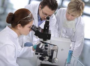 На Кубани власти хотят дать больше денег молодым ученым