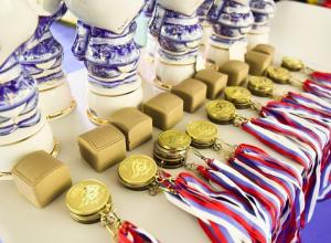 Россияне победили в медальном зачете чемпионата мира по самбо в Сочи