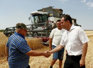 Град не повредил урожай Кубани