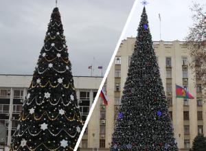 Губернатор Кондратьев и мэр Первышов померились елками в Краснодаре