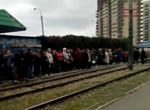 «Вот почему я опаздываю на работу», - Около сотни человек ждали трамвай в Краснодаре