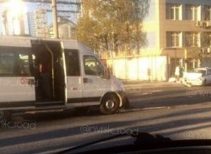 В Новороссийске 10-летняя девочка пострадала в ДТП с маршруткой