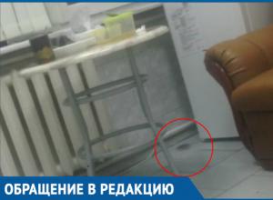 «По полу свободно бегают мыши», - жительница Краснодара рассказала о пребывании в ЗИПовской больнице