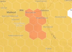 Аллергикам Кубани поможет новая онлайн-карта