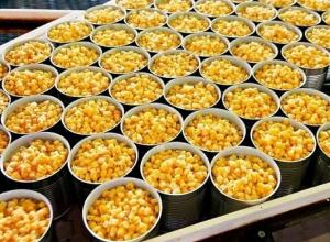 На Кубани полным ходом идет уборка и заготовка консервов