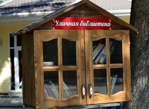 В Краснодаре вандалы сожгли уличную библиотеку
