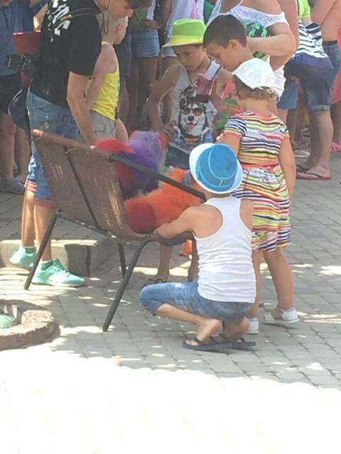 Крашеных собак в Анапе пожалели туристы
