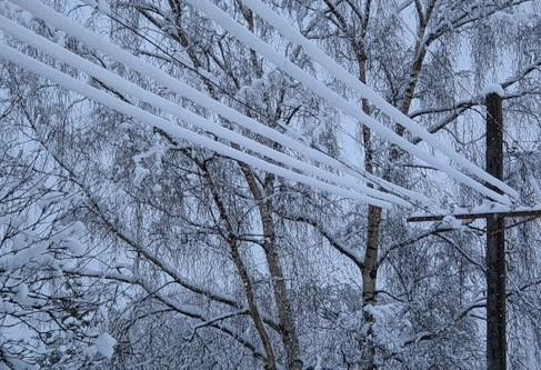 Из-за обильного мокрого снега наКубани объявили экстренное предупреждение