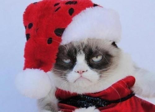 Как правильно вернуться к работе после новогодних праздников, рассказал психолог