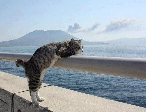 Погода на Кубани шепчет ехать на море
