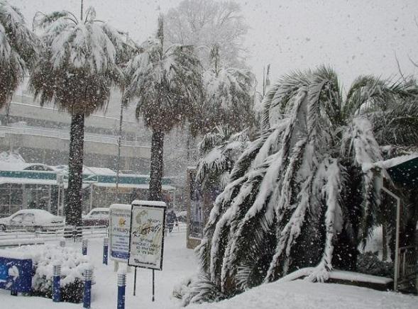 В Сочи из-за снегопада образовались заторы и аварии