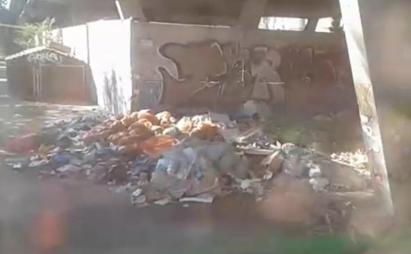 Жалоба женщины помогла очистить площадку возле школы от мусора в Краснодаре