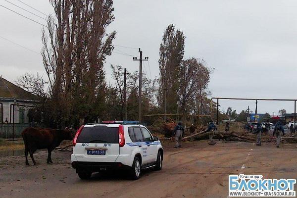 В Краснодарском крае ликвидируют последствия шторма