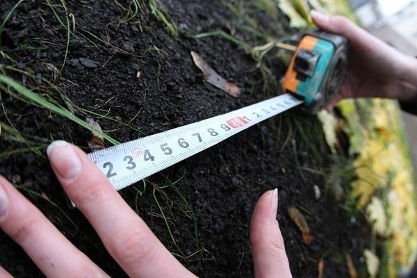 Предоставление земли с нарушением закона является основанием для отказа в защите прав на использование земель сельхозназначения