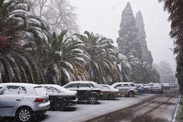 Сочи завалит мокрым снегом