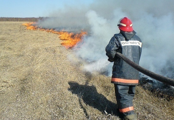 В Краснодаре в районе «Баскет-холла» загорелась сухая трава