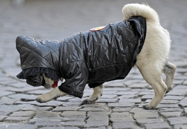 В Краснодаре температура воздуха опустится до 10 градусов