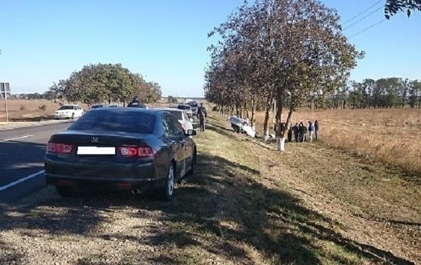 На Кубани «Лада Приора» врезалась в дерево, погибла женщина