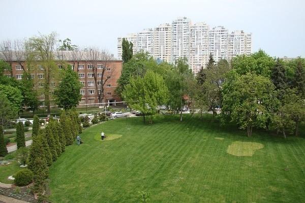 Зеленые насаждения вокруг Краснодара защитят от вырубки застройщиками