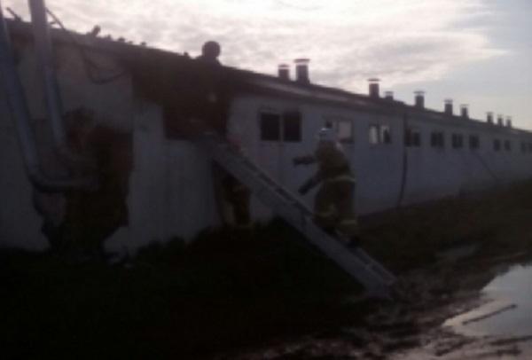 В Выселковском районе произошел пожар на ферме