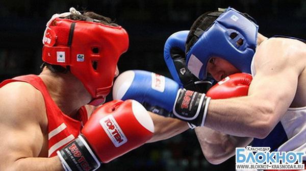 Кубанские боксеры завоевали 10 медалей