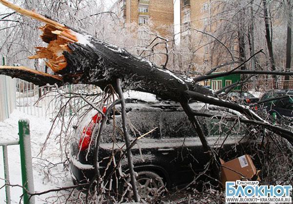 Ледяной дождь обошелся столице Кубани в 538 млн рублей