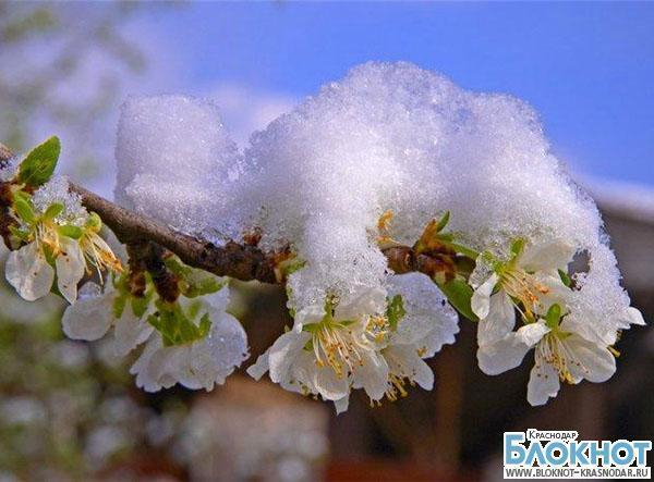 В выходные на Кубань придут морозы
